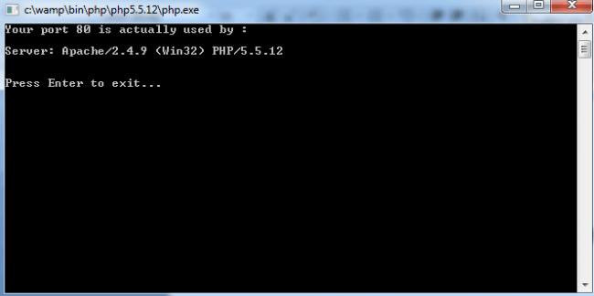 Port 80 Test Result In Wamp Server