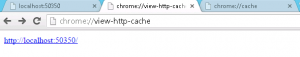 See Cached Files In Chrome