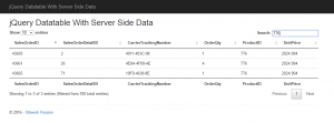 jQuery Datatable With Server Side Data Search