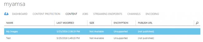 Media Service Created Azure Portal Output