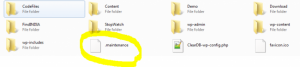 Maintenence File